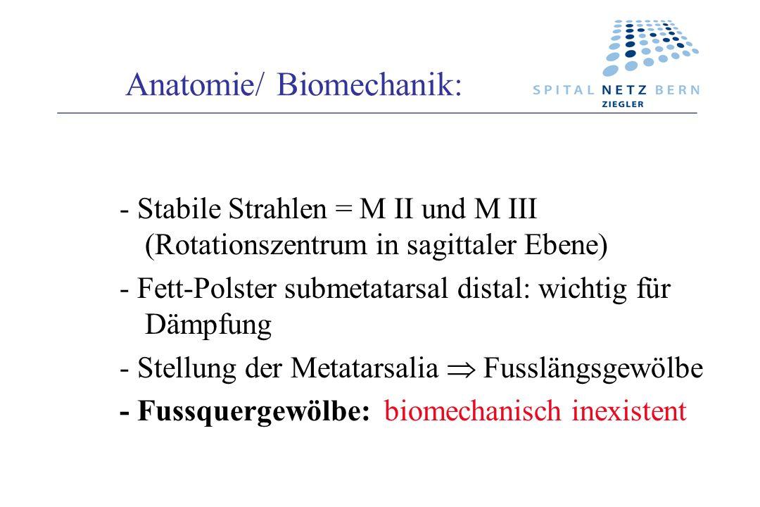 - Stabile Strahlen = M II und M III (Rotationszentrum in sagittaler Ebene) - Fett-Polster submetatarsal distal: wichtig für Dämpfung - Stellung der Me