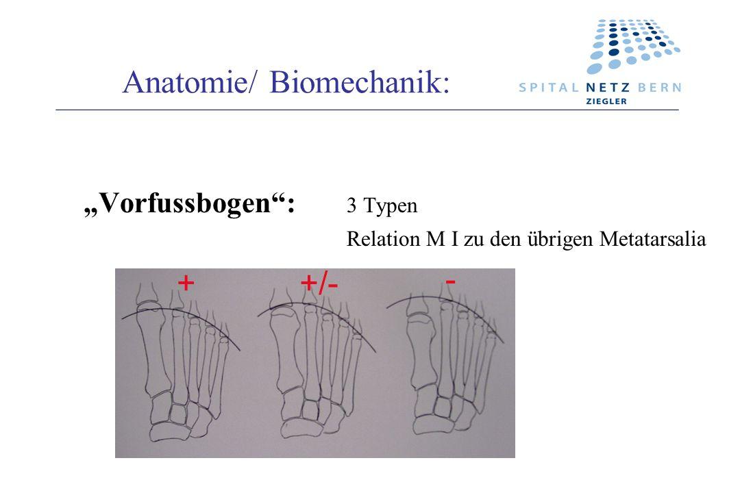 Anatomie/ Biomechanik: Vorfussbogen: 3 Typen Relation M I zu den übrigen Metatarsalia ++/- -