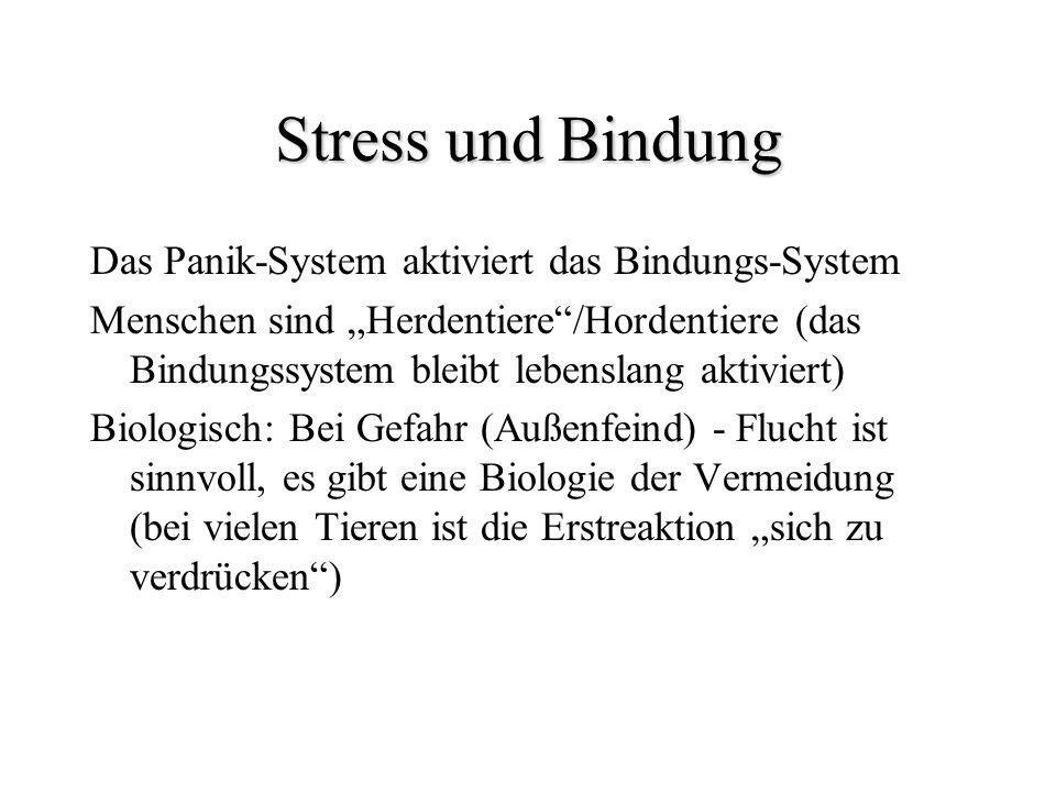 Stress und Bindung Das Panik-System aktiviert das Bindungs-System Menschen sind Herdentiere/Hordentiere (das Bindungssystem bleibt lebenslang aktivier