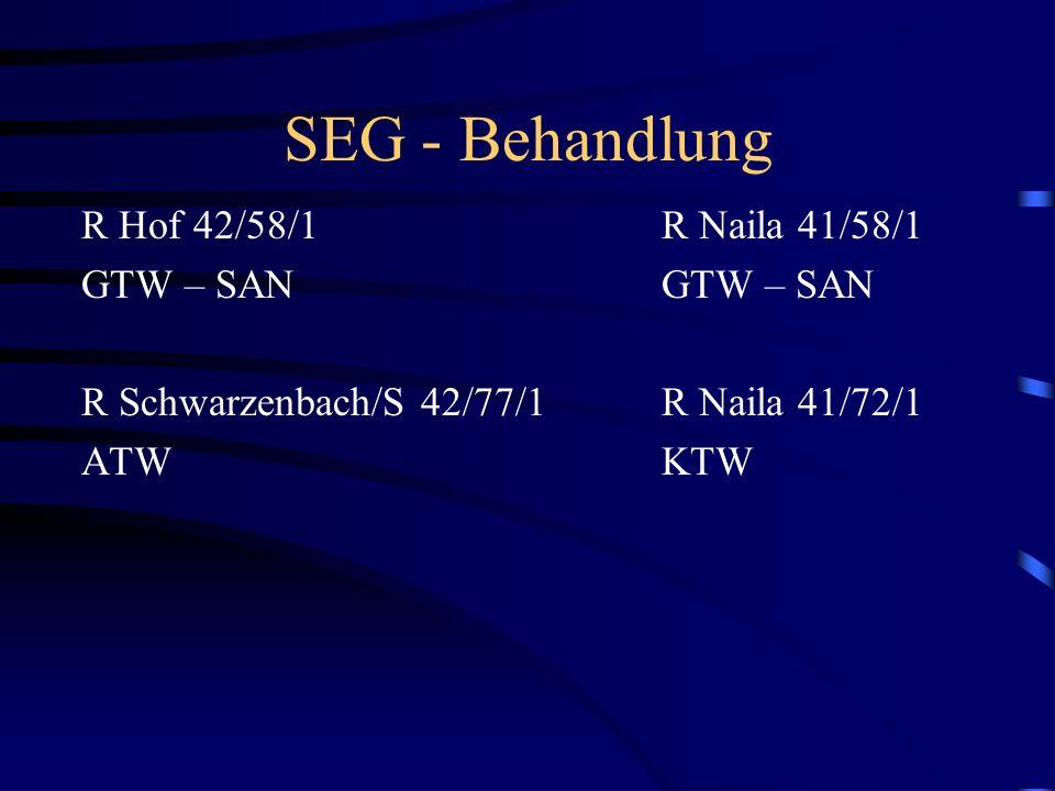 SANITÄTSDIENST SEG Trp Schnell-Einsatz-Gruppe Transport 1.