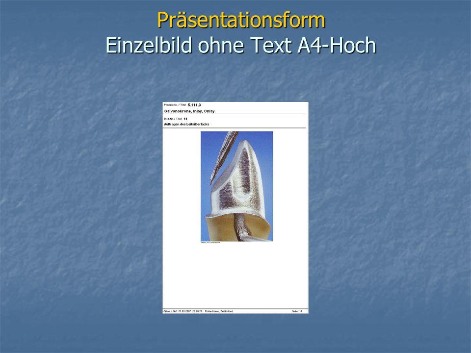 Präsentationsform Einzelbild ohne Text A4-Hoch