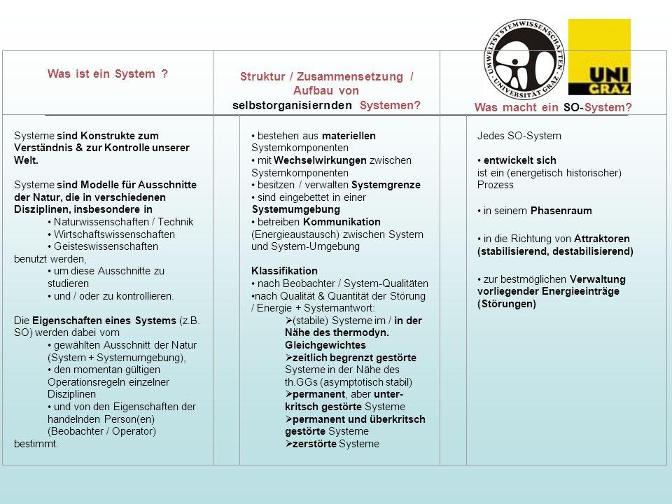 Was ist ein System ? Struktur / Zusammensetzung / Aufbau von selbstorganisiernden Systemen? Was macht ein SO-System? Systeme sind Konstrukte zum Verst
