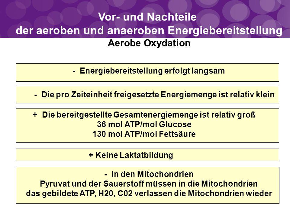 Vor- und Nachteile der aeroben und anaeroben Energiebereitstellung Aerobe Oxydation + Keine Laktatbildung + Die bereitgestellte Gesamtenergiemenge ist