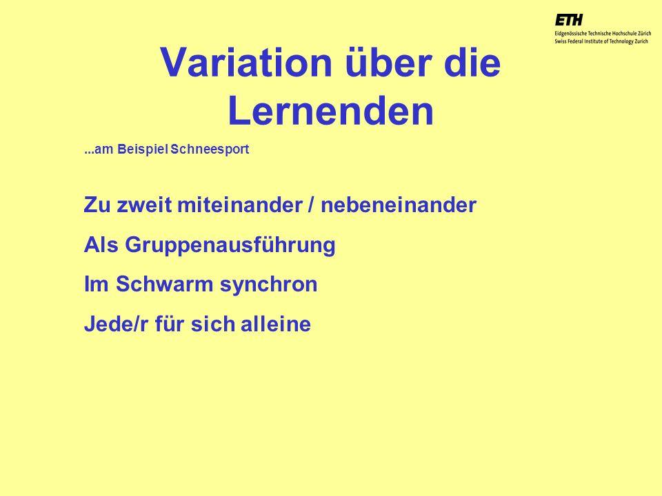 040925 ETH Zürich IBSW Lernstufen und Sicherheit - Pius Disler Variation über die Lernenden Zu zweit miteinander / nebeneinander Als Gruppenausführung