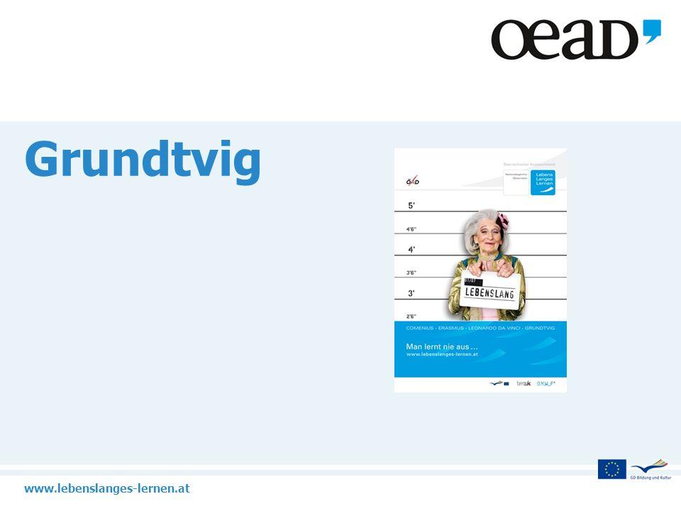 www.lebenslanges-lernen.at 22 Multilaterale Netzwerke Aktive Vernetzung von Grundtvig-Projekten bzw.
