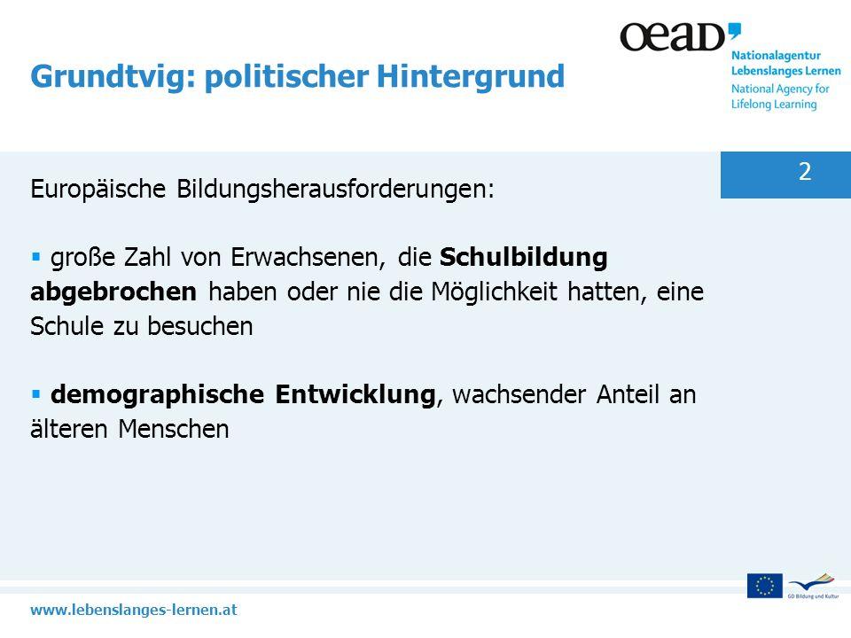 www.lebenslanges-lernen.at 2 Grundtvig: politischer Hintergrund Europäische Bildungsherausforderungen: große Zahl von Erwachsenen, die Schulbildung ab