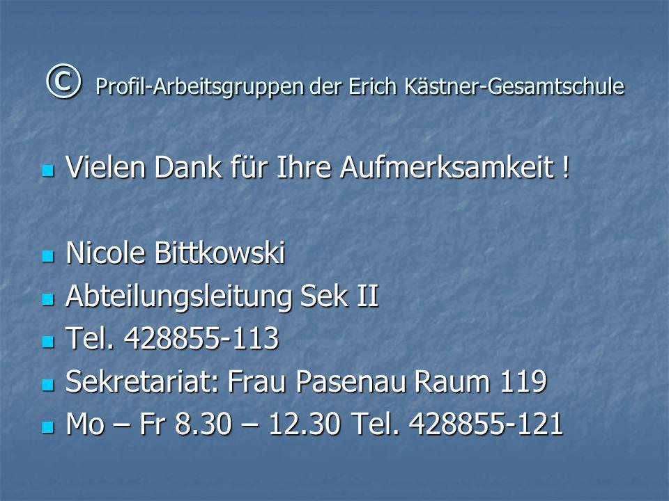 © Profil-Arbeitsgruppen der Erich Kästner-Gesamtschule Vielen Dank für Ihre Aufmerksamkeit ! Vielen Dank für Ihre Aufmerksamkeit ! Nicole Bittkowski N