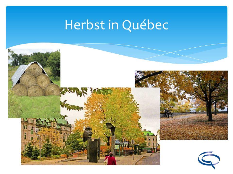 Herbst in Québec