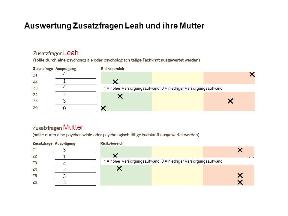 3 4 2 1 3 3 Auswertung Zusatzfragen Leah und ihre Mutter Leah 0 4 4 1 2 3 Mutter 4 = hoher Versorgungsaufwand; 0 = niedriger Versorgungsaufwand