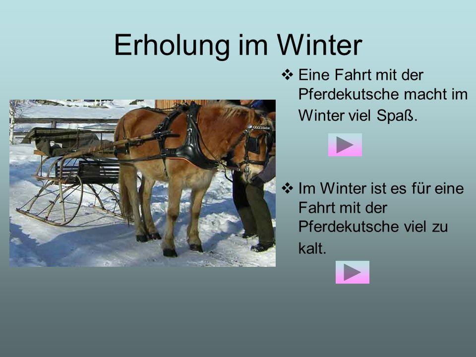 Erholung im Winter Eine Fahrt mit der Pferdekutsche macht im Winter viel Spaß. Im Winter ist es für eine Fahrt mit der Pferdekutsche viel zu kalt.