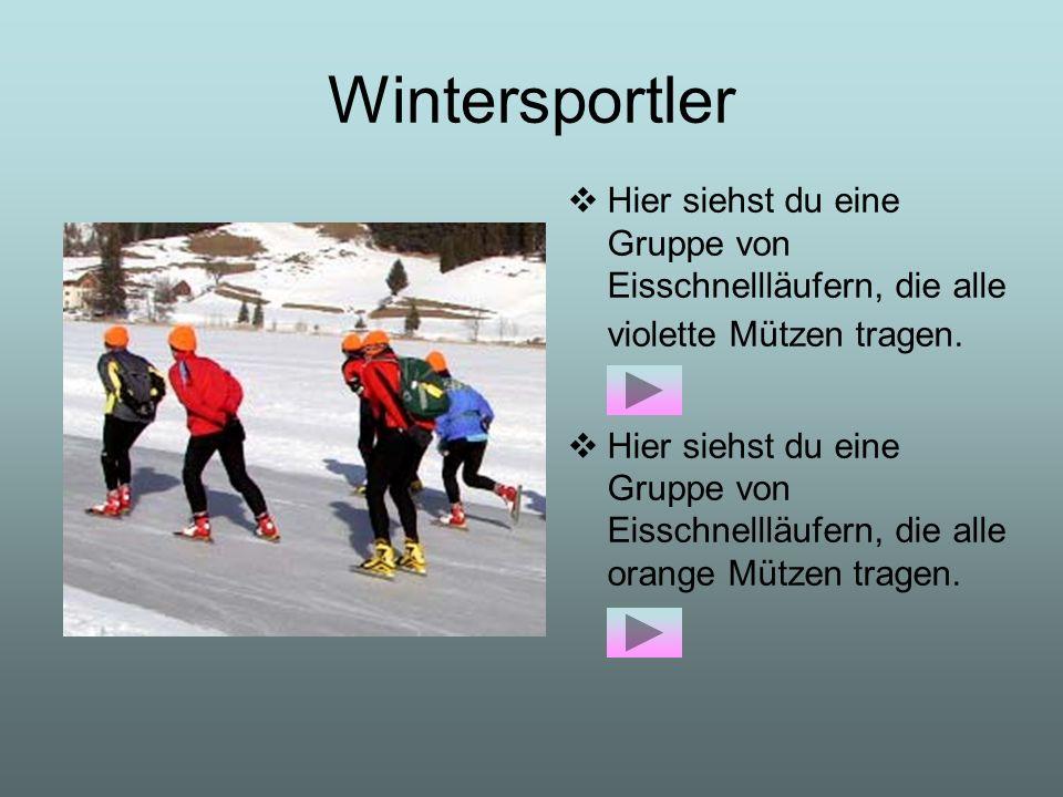 Wintersportler Hier siehst du eine Gruppe von Eisschnellläufern, die alle violette Mützen tragen. Hier siehst du eine Gruppe von Eisschnellläufern, di