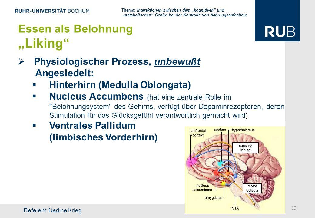 Physiologischer Prozess, unbewußt Angesiedelt: Hinterhirn (Medulla Oblongata) Nucleus Accumbens (hat eine zentrale Rolle im