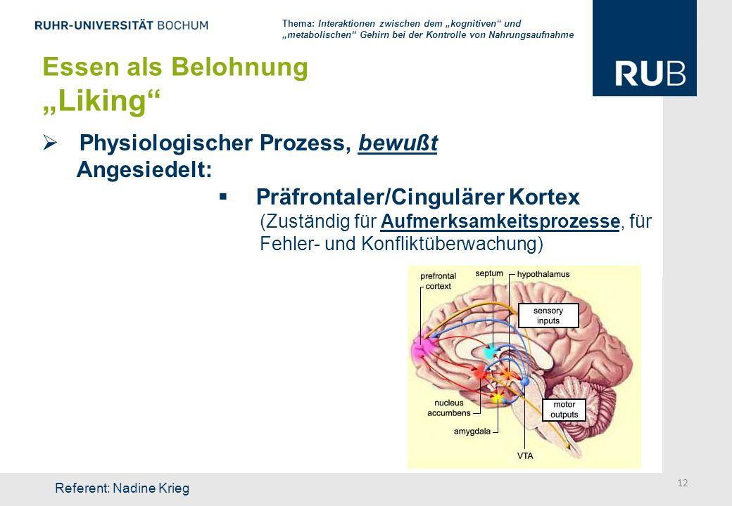 Physiologischer Prozess, bewußt Angesiedelt: Präfrontaler/Cingulärer Kortex (Zuständig für Aufmerksamkeitsprozesse, für Fehler- und Konfliktüberwachun