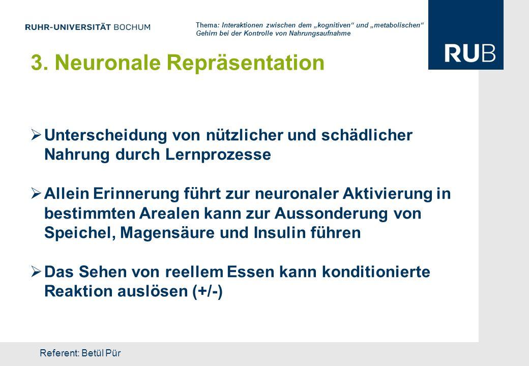 3. Neuronale Repräsentation Unterscheidung von nützlicher und schädlicher Nahrung durch Lernprozesse Allein Erinnerung führt zur neuronaler Aktivierun