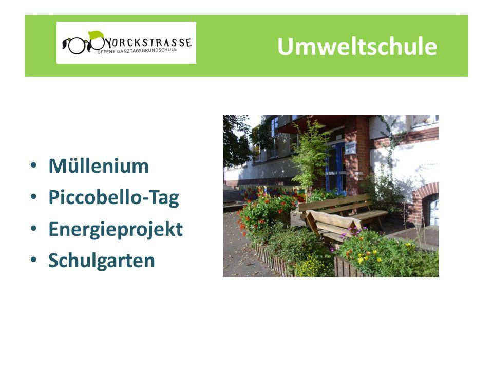 Umweltschule Müllenium Piccobello-Tag Energieprojekt Schulgarten