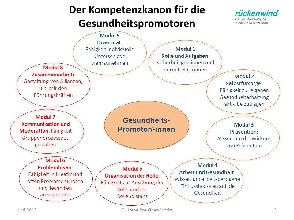 Der Kompetenzkanon für die Gesundheitspromotoren Gesundheits- Promotor/-innen Modul 4 Arbeit und Gesundheit: Wissen um arbeitsbezogene Einflussfaktore