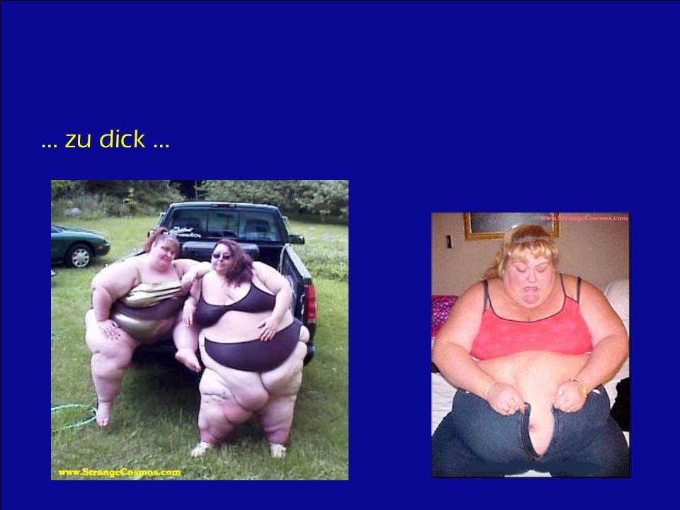 … zu dick …