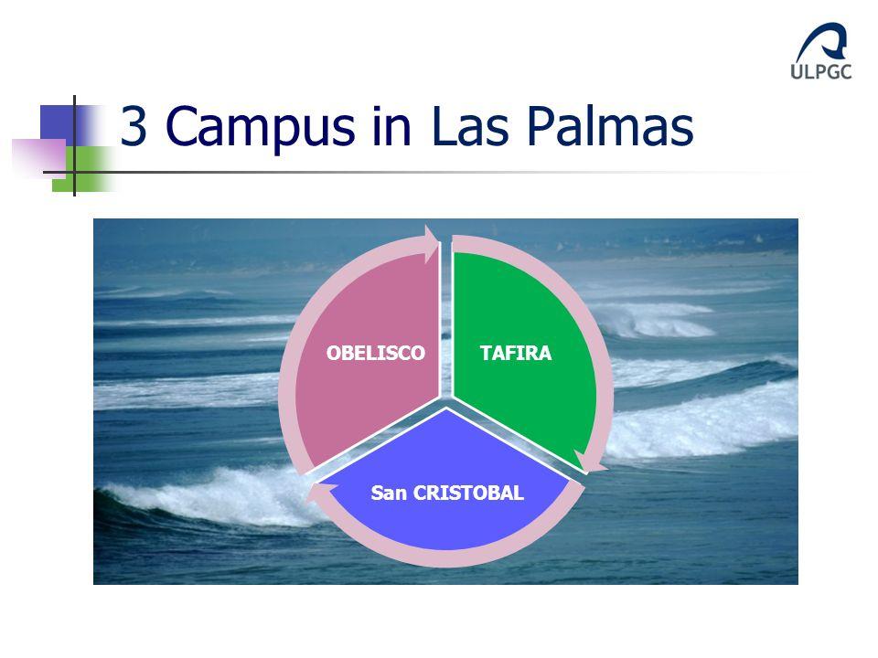 3 Campus in Las Palmas TAFIRA San CRISTOBAL OBELISCO
