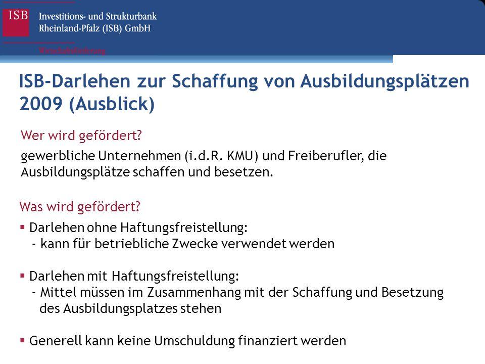 ISB-Darlehen zur Schaffung von Ausbildungsplätzen 2009 (Ausblick) Wer wird gefördert? gewerbliche Unternehmen (i.d.R. KMU) und Freiberufler, die Ausbi