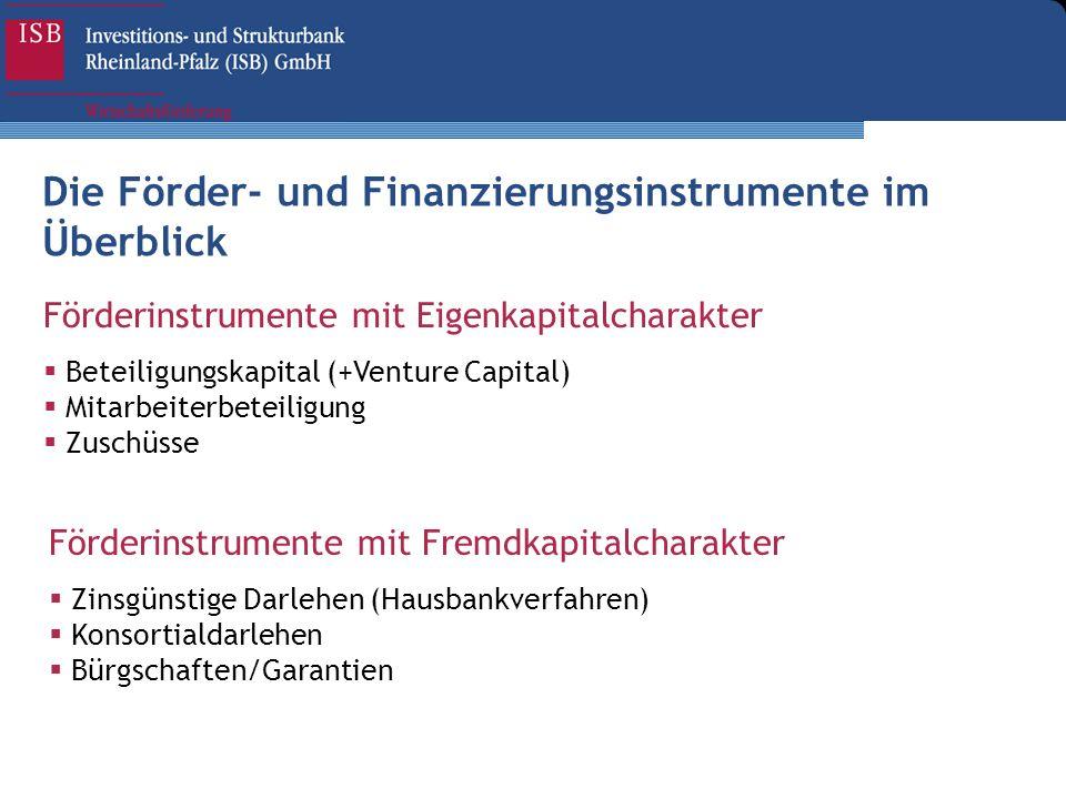Förderinstrumente mit Eigenkapitalcharakter Beteiligungskapital (+Venture Capital) Mitarbeiterbeteiligung Zuschüsse Förderinstrumente mit Fremdkapital