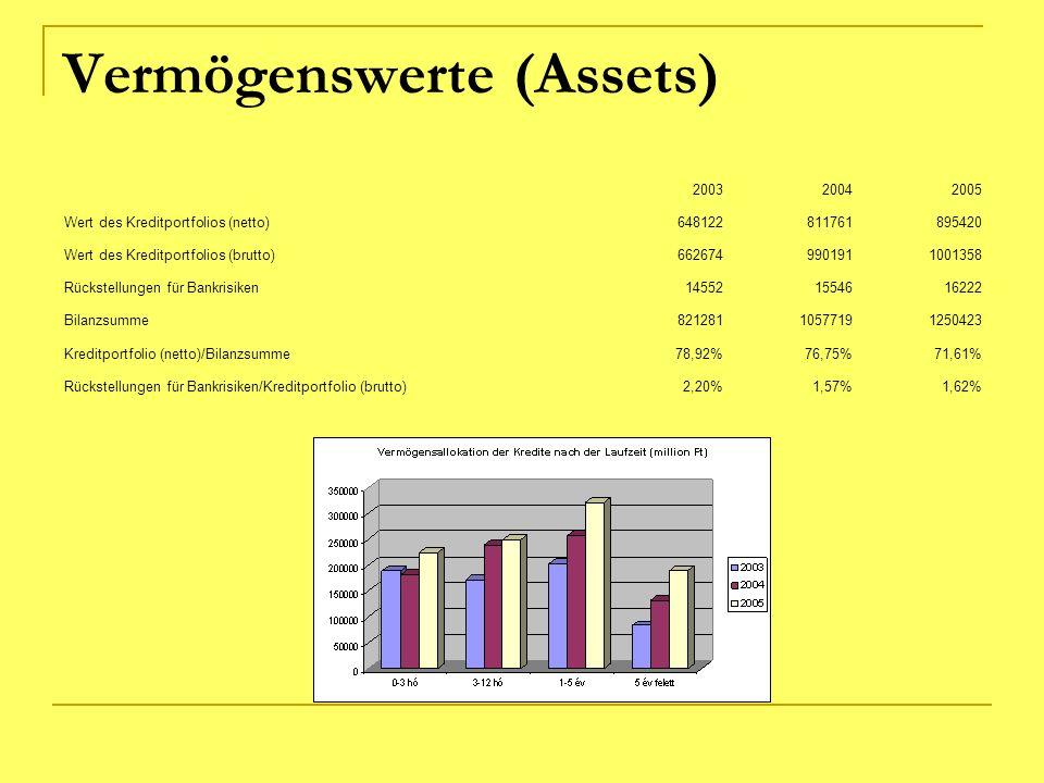 Vermögenswerte (Assets) 200320042005 Wert des Kreditportfolios (netto)648122811761895420 Wert des Kreditportfolios (brutto)6626749901911001358 Rückste