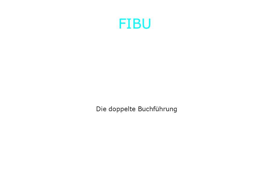 Die doppelte Buchführung FIBU