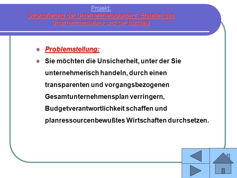 Projekt: Strukturierung der Unternehmensplanung: Erstellen des Unternehmensplans und der Budgets Problemstellung: Problemstellung: Sie möchten die Uns