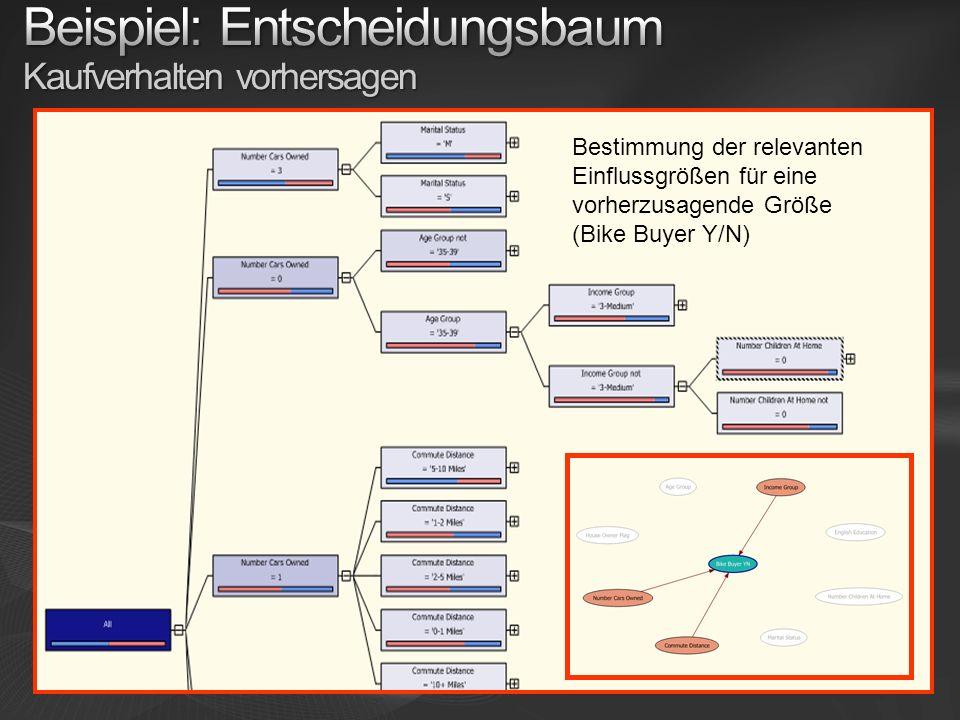 Bestimmung der relevanten Einflussgrößen für eine vorherzusagende Größe (Bike Buyer Y/N)