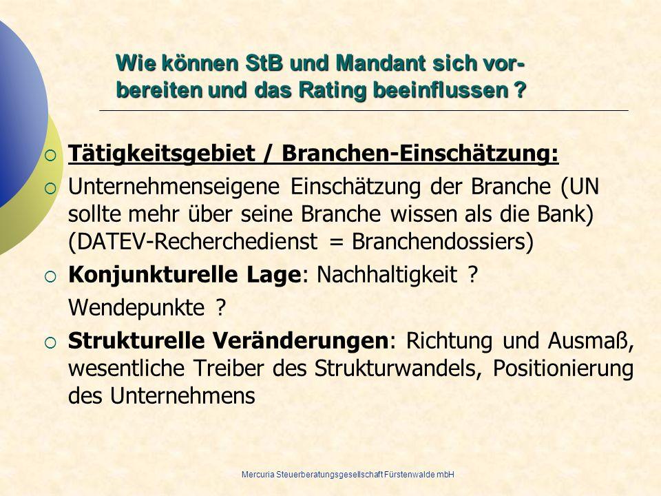 Mercuria Steuerberatungsgesellschaft Fürstenwalde mbH Tätigkeitsgebiet / Branchen-Einschätzung: Unternehmenseigene Einschätzung der Branche (UN sollte