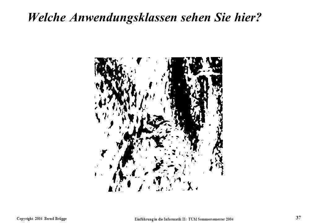 Copyright 2004 Bernd Brügge Einführung in die Informatik II: TUM Sommersemester 2004 37 Welche Anwendungsklassen sehen Sie hier?