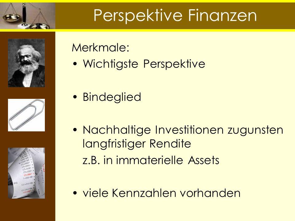 Perspektive Finanzen Merkmale: Wichtigste Perspektive Bindeglied Nachhaltige Investitionen zugunsten langfristiger Rendite z.B. in immaterielle Assets