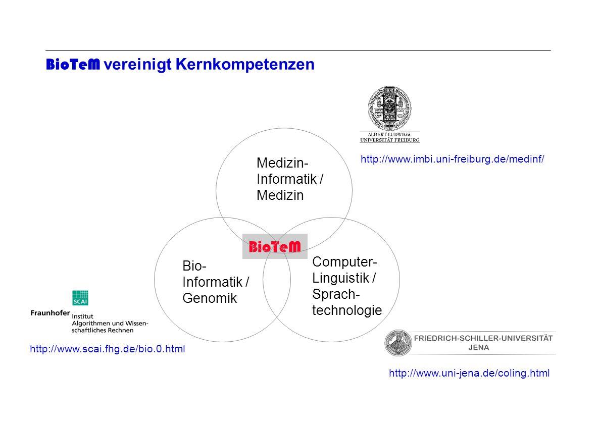 Seite 12 Archivierungsangaben BioTeM vereinigt Kernkompetenzen BioTeM Medizin- Informatik / Medizin http://www.imbi.uni-freiburg.de/medinf/ Computer-