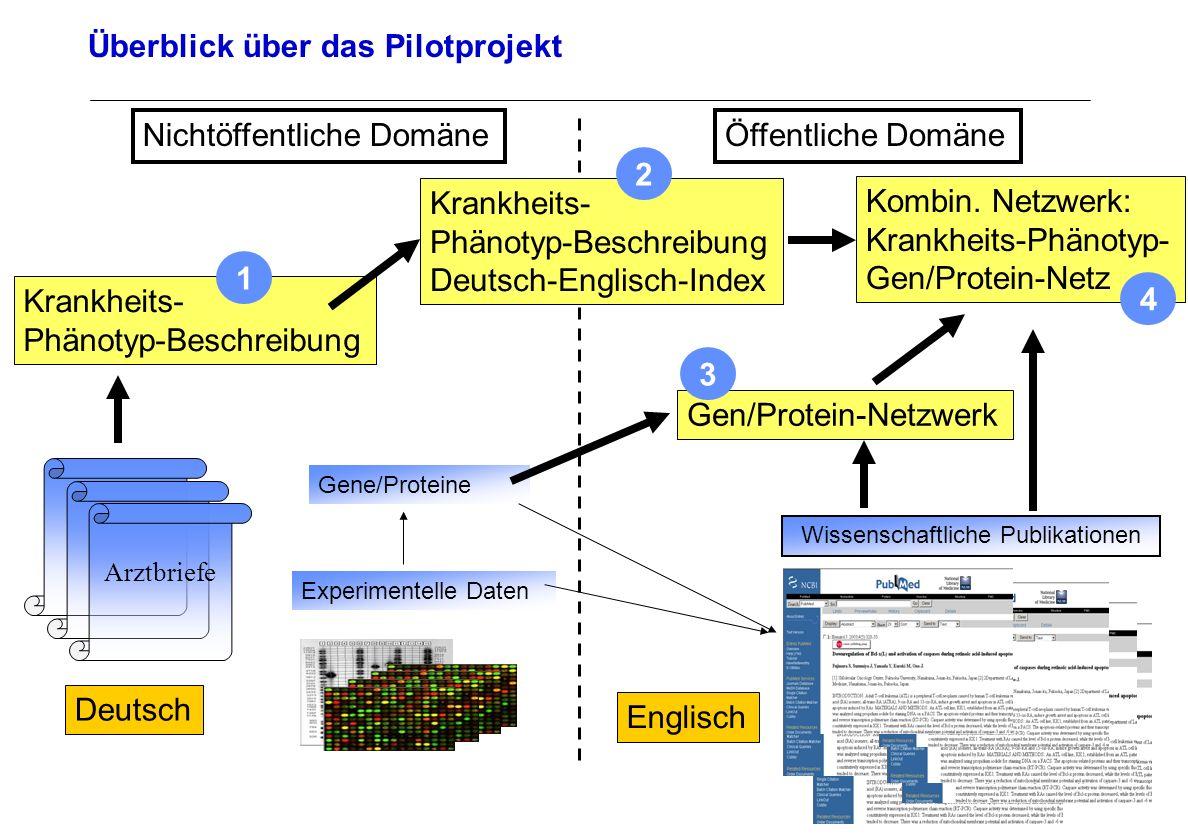 Seite 18 Archivierungsangaben Überblick über das Pilotprojekt Arztbriefe Deutsch Wissenschaftliche Publikationen Englisch Experimentelle Daten Öffentl
