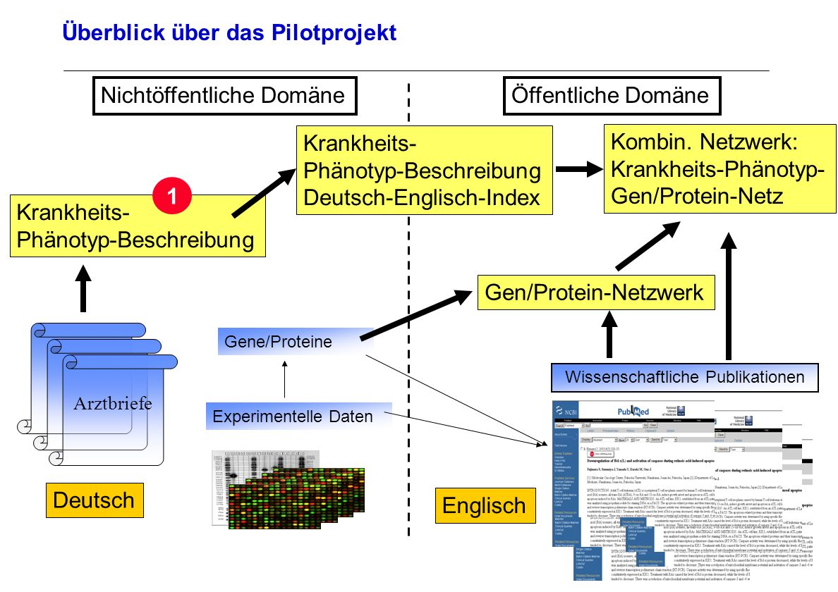 Seite 19 Archivierungsangaben Überblick über das Pilotprojekt Arztbriefe Deutsch Wissenschaftliche Publikationen Englisch Experimentelle Daten Öffentl