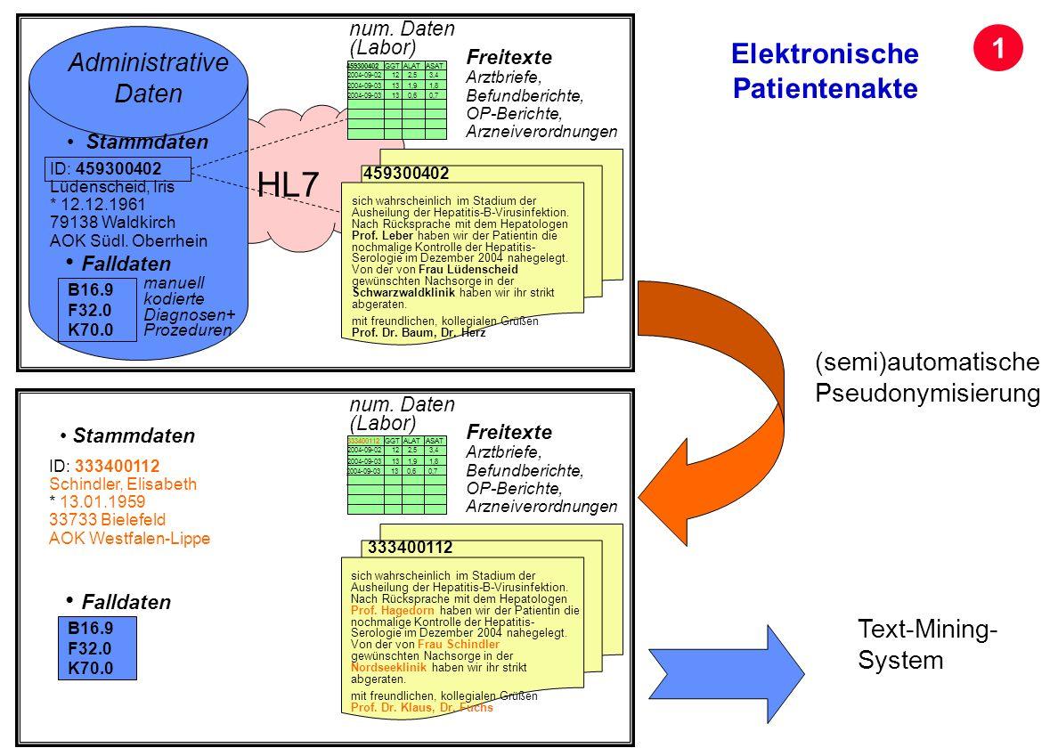 Seite 21 Archivierungsangaben HL7 sich wahrscheinlich im Stadium der Ausheilung der Hepatitis-B-Virusinfektion. Nach Rücksprache mit dem Hepatologen P