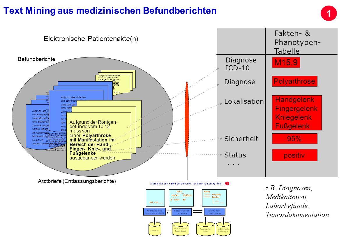 Seite 23 Archivierungsangaben Fakten- & Phänotypen- Tabelle Diagnose ICD-10 Diagnose... Status Lokalisation M15.9 positiv Polyarthrose Aufgrund des kl
