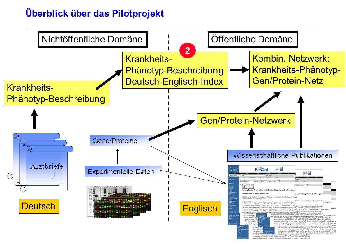 Seite 25 Archivierungsangaben Überblick über das Pilotprojekt Arztbriefe Deutsch Wissenschaftliche Publikationen Englisch Experimentelle Daten Öffentl