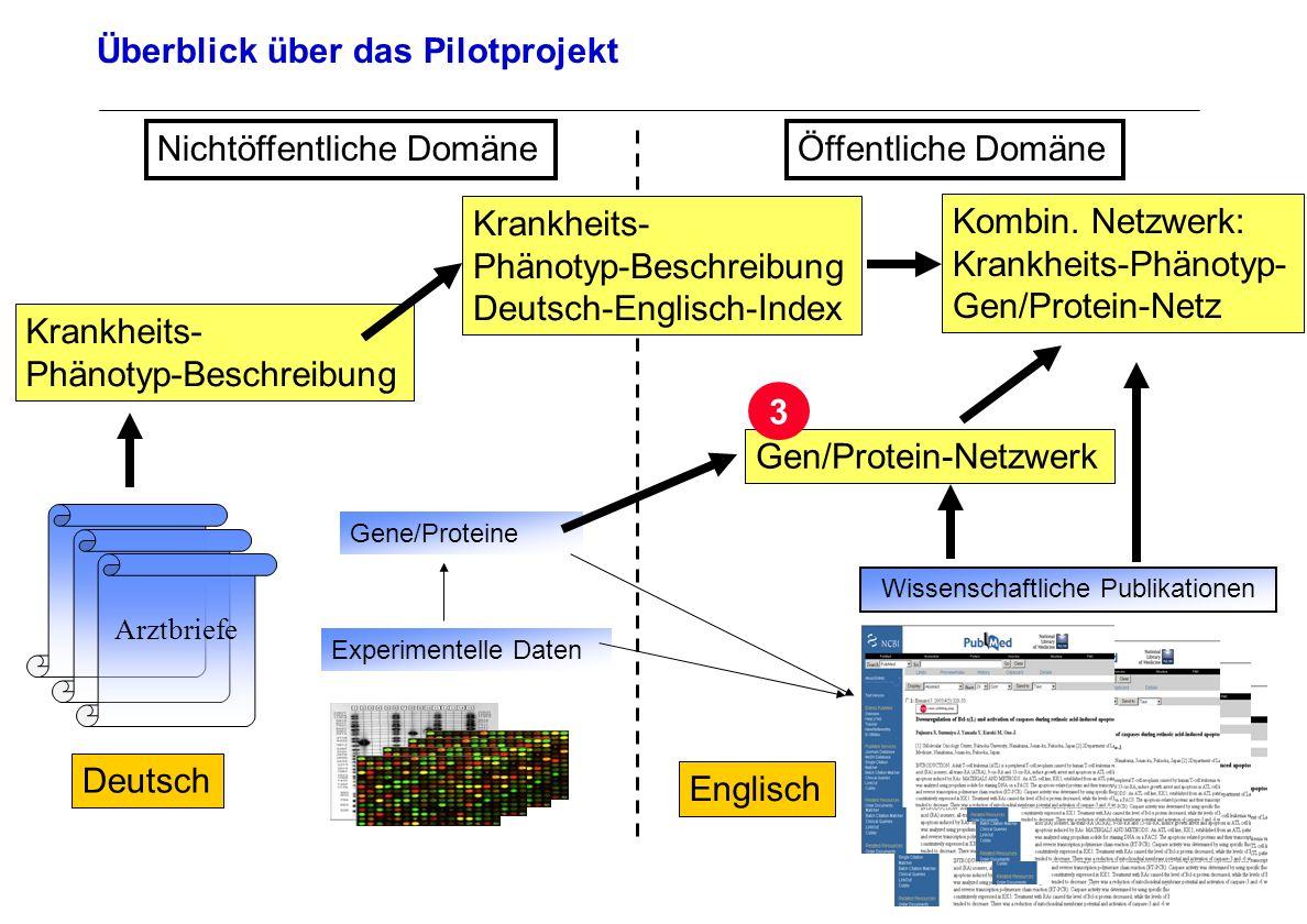 Seite 29 Archivierungsangaben Überblick über das Pilotprojekt Arztbriefe Deutsch Wissenschaftliche Publikationen Englisch Experimentelle Daten Öffentl