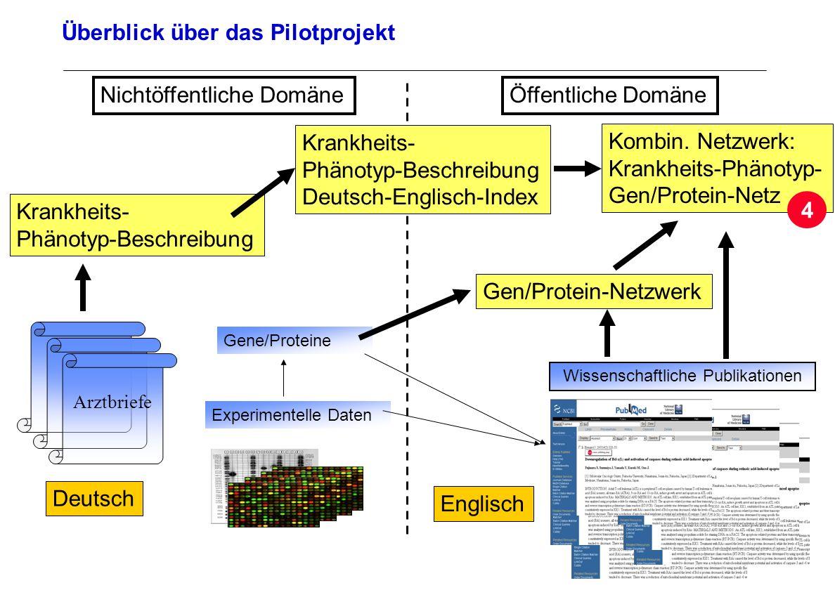 Seite 34 Archivierungsangaben Überblick über das Pilotprojekt Arztbriefe Deutsch Wissenschaftliche Publikationen Englisch Experimentelle Daten Öffentl