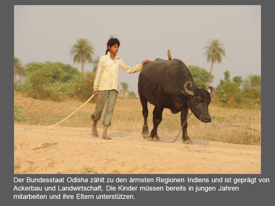 Der Bundesstaat Odisha zählt zu den ärmsten Regionen Indiens und ist geprägt von Ackerbau und Landwirtschaft. Die Kinder müssen bereits in jungen Jahr