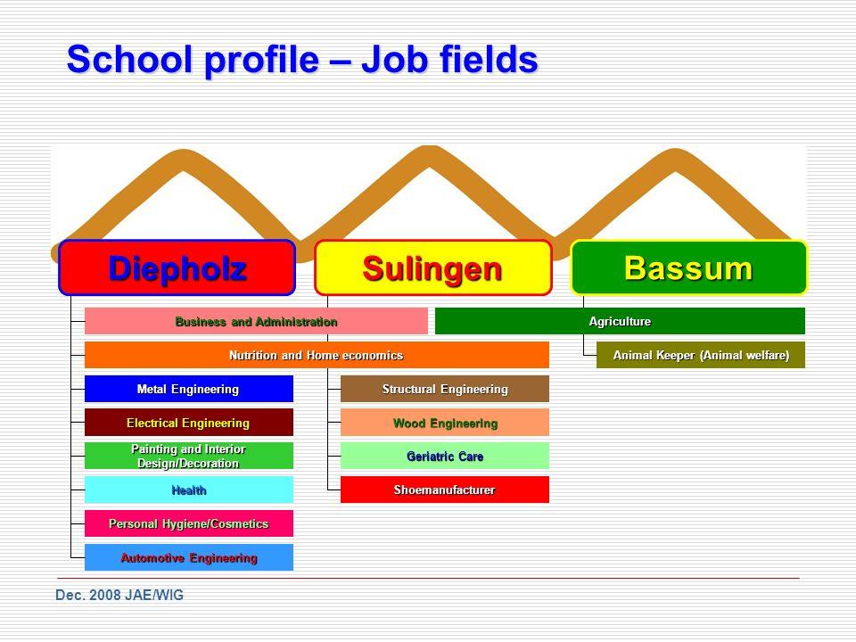 School profile – Job fields Dec.