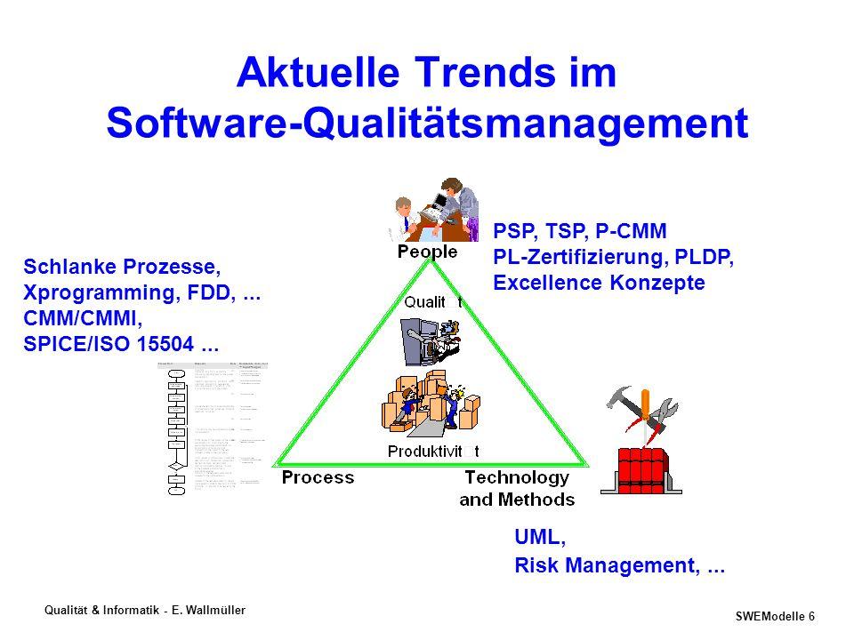 SWEModelle 5 Qualität & Informatik - E. Wallmüller SEI 2001