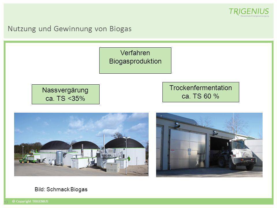 © Copyright TRIGENIUS 13 Nutzung und Gewinnung von Biogas Verfahren Biogasproduktion Nassvergärung ca. TS <35% Trockenfermentation ca. TS 60 % Bild: S