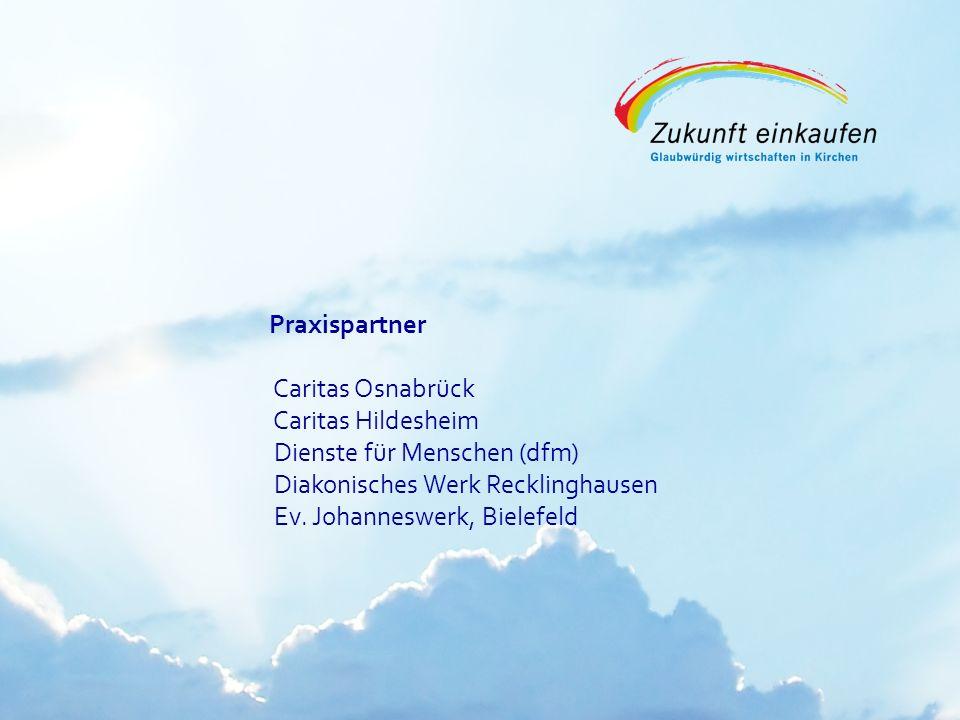 Copyright: EKvW 2008 Praxispartner Caritas Osnabrück Caritas Hildesheim Dienste für Menschen (dfm) Diakonisches Werk Recklinghausen Ev. Johanneswerk,