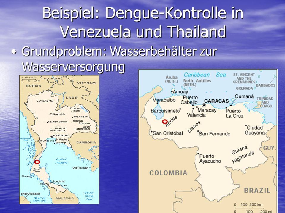 Beispiel: Dengue-Kontrolle in Venezuela und Thailand Grundproblem: Wasserbehälter zur WasserversorgungGrundproblem: Wasserbehälter zur Wasserversorgung