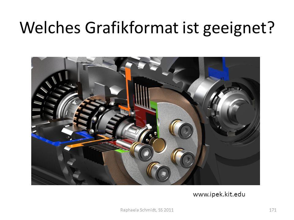 Welches Grafikformat ist geeignet? Raphaela Schmidt, SS 2011171 www.ipek.kit.edu