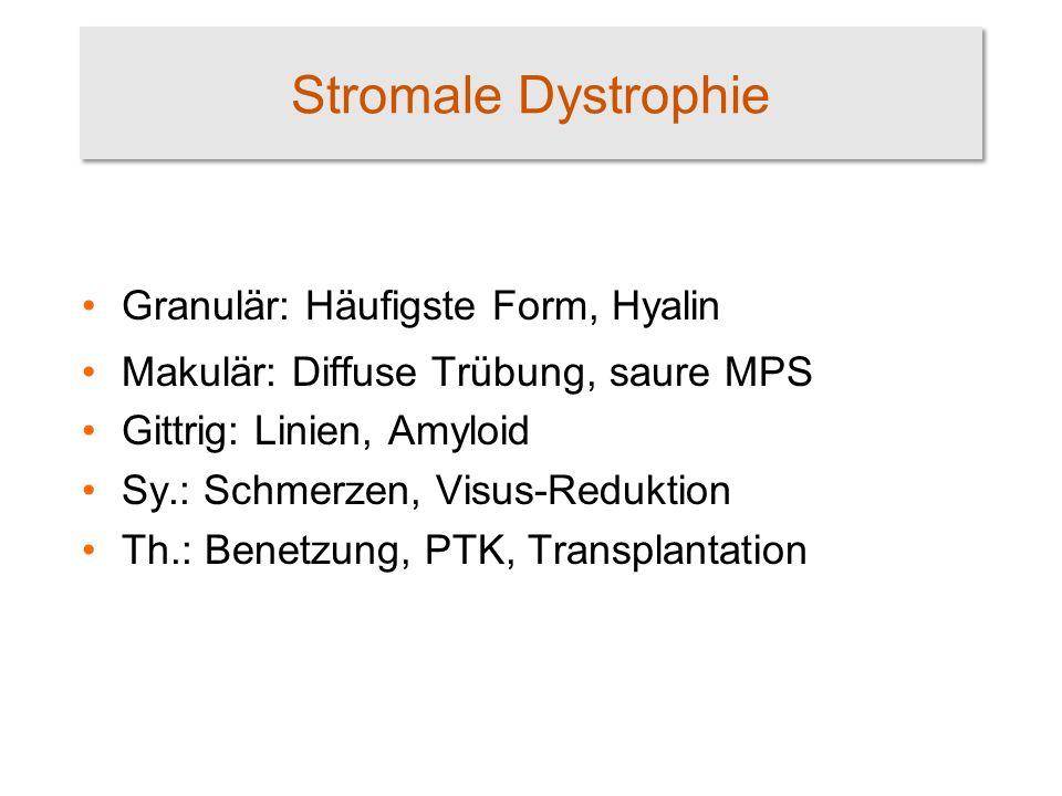 Stromale Dystrophie Granulär: Häufigste Form, Hyalin Makulär: Diffuse Trübung, saure MPS Gittrig: Linien, Amyloid Sy.: Schmerzen, Visus-Reduktion Th.: