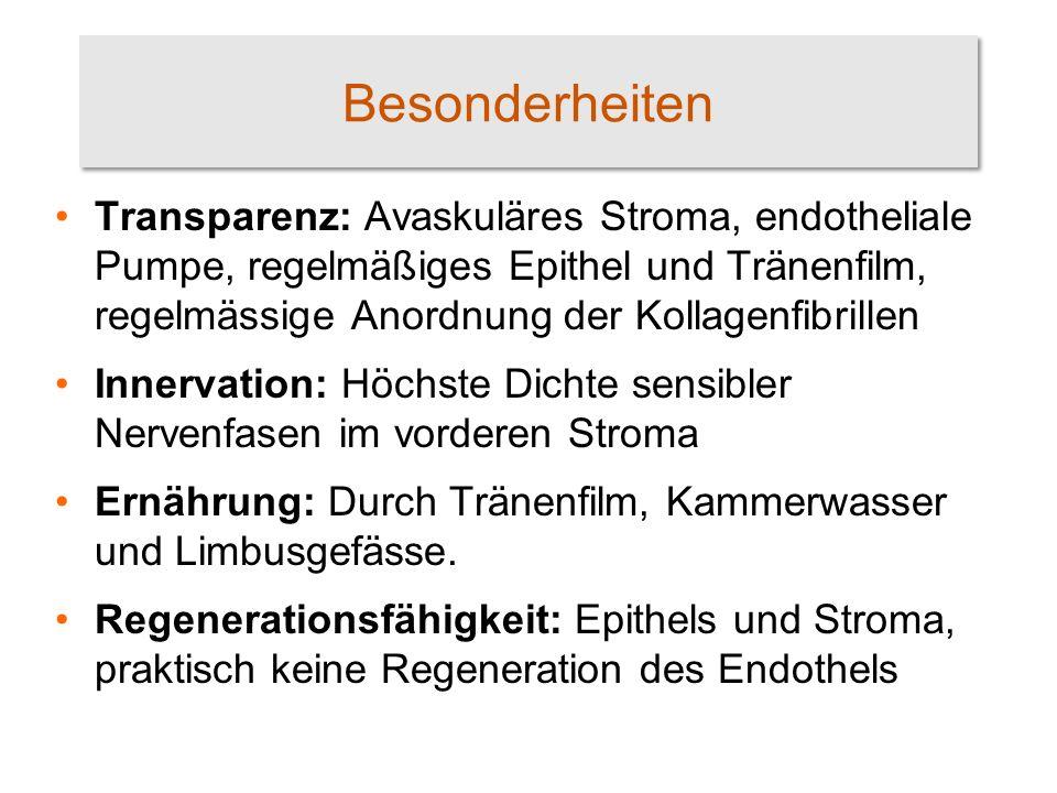 Sterile Keratitis Systemerkrankungen: D.