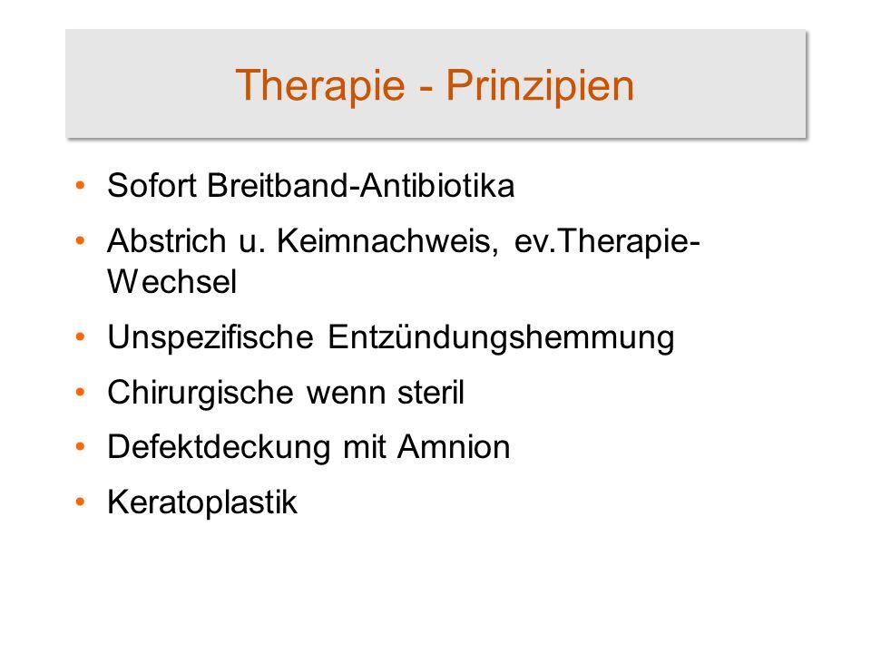Therapie - Prinzipien Sofort Breitband-Antibiotika Abstrich u. Keimnachweis, ev.Therapie- Wechsel Unspezifische Entzündungshemmung Chirurgische wenn s