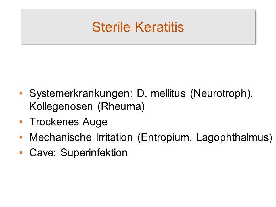 Sterile Keratitis Systemerkrankungen: D. mellitus (Neurotroph), Kollegenosen (Rheuma) Trockenes Auge Mechanische Irritation (Entropium, Lagophthalmus)